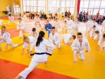 Demonstratia micilor Judoka